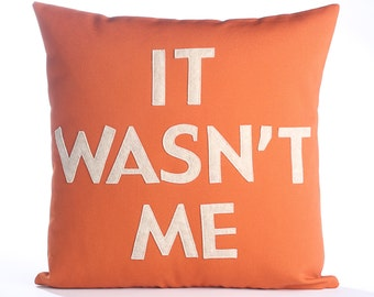 IT WASN'T ME - recycled felt applique pillow 16 inch - more colors available