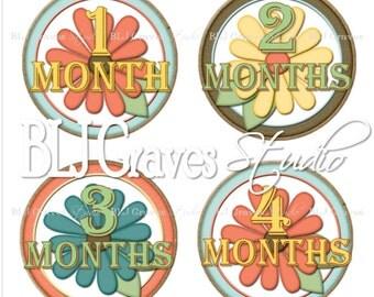 Monthly Milestone Stickers Baby Girl Bodysuit Stickers Baby Month Stickers MS001