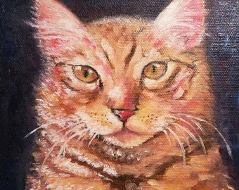 Original Oil Painting | Cat Portrait | Painting of a Cat | 6 x 6 inch on canvas | Ready to Ship