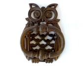 Hand Painted Owl Iron Door Knocker