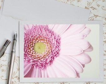 Daisy Photo Notecard - Pink Floral Photo Note Card, Stationery, Blank Notecard