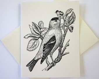 Goldfinch Bird Note Cards Set of 10 with Matching Envelopes