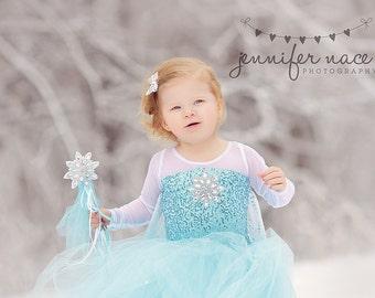 Frozen costume Elsa  inspired  tutu costume 4t Halloween costume