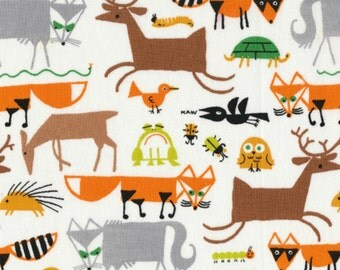 Cloud 9 Fabrics - Happy Drawing by Ed Emberley - Forest Friends Organic