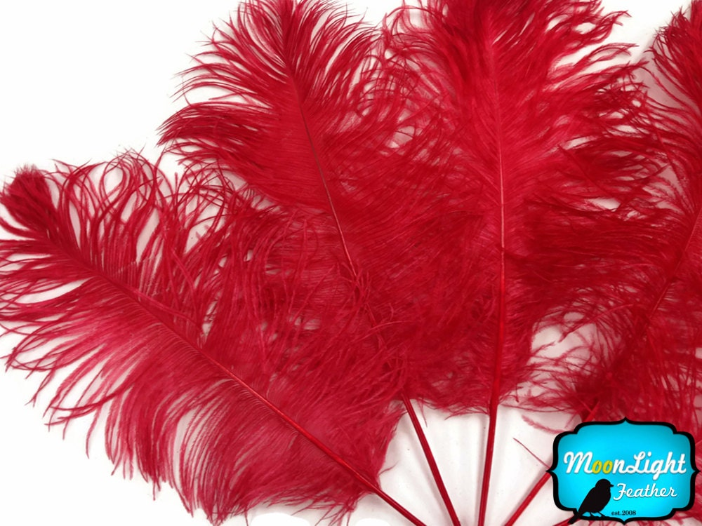 Ostrich feathers lb red tail wholesale