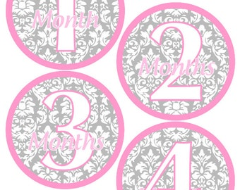 Baby Month Stickers Baby Girl Monthly Stickers Light Pink and Grey Damask Month Stickers Girl Baby Shower Gift and Photo Prop Angela-T