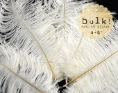 BULK 4-8 inches - Ostrich Feathers Drabs, Wholesale Feathers - White