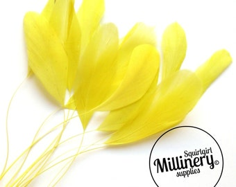 Stripped Coque Feather Hat Mount Yellow (10 Feathers) for Millinery & Fascinators