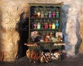 Alchemist's Potion Cupboard