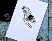 Chameleon Skull / Chamaeleonidae 'specimen' (noir) - Limited edition one-colour screenprint