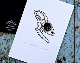 Chameleon Skull / Chamaeleonidae 'specimen' (noir) - Limited edition one-colour screenprint
