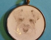 Toy Miniature Schnauzer Original Pencil Drawing Pendant with Organza Pouch -Choice of Necklaces -Free Shipping- Desert Impressions