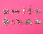 Cake Pull 2 - 10 different antique silver tone charms