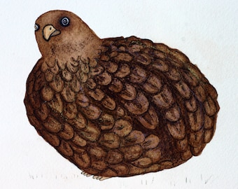 Fat brown quail, original watercolor painting, brown bird, autumn, feathers, pen and ink, round, pastels