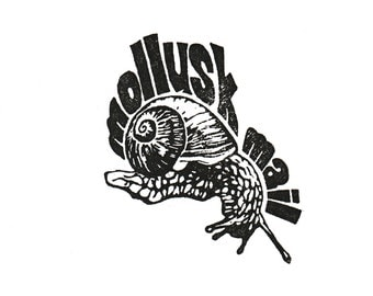Mollusk Mail Clear Polymer Rubber Stamp made from a hand-carved stamp