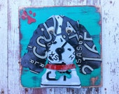 Customized Pet Art Portrait Dog Puppy Collie Shepard Cocker License Plate Artwork Navy Aqua Teal Red  - Recycled Vintage - Upcycled Art