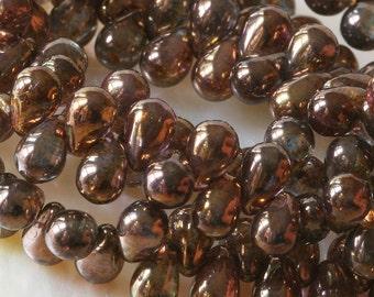 Czech Glass Teardrop Beads 4x6  Gold Luster Tear Drop Beads (100)