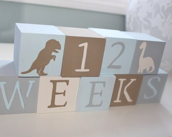 Baby Blocks- Photo Prop for Monthly and weekly Baby Pictures- Set of 22 Blocks