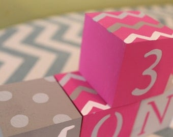 Baby Blocks- Photo Prop for Monthly Baby Pictures- Set of 16 Blocks- Hot Pink, Gray Chevron and Dot