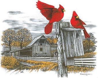 Cardinal Bird House Etsy
