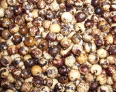 Acai Beads Natural Package of 500