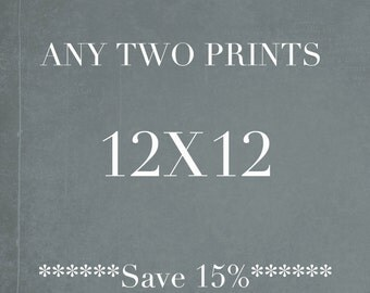 Two 12x12 Prints, Square Wall Art, Discounted Print Set