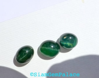 Apatite Cat's Eye Cabochon. Natural gemstone. Bottle Green. 1 pc. Oval. 9x7.5 mm. 3.21 cts (Ap376B)