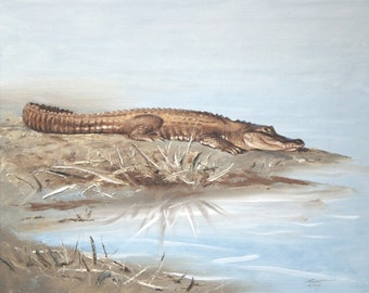 Alligator wildlife painting 20x24 oils on canvas by RUSTY RUST / A-100