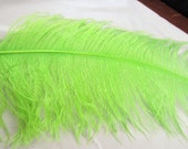 Lime OSTRICH Plume ostd-18 craft feathers