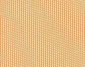 Miss Kate Sundae Tangerine Scallop Stripe by Bonnie & Camille for Moda