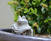 Flower Pot and Ceramic Frog Photograph,  Nature Photography,Fine Art Photo, Wall Art, 4x6 5x7 8x10 11x14