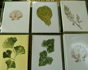 Botanical print note card set, 12 cards, blank inside, assorted images of leaves and shells, nature printing, gift for nature lovers
