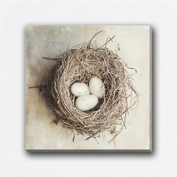 Nest Home Decor 28 Images Our Nest Home Decor Nest
