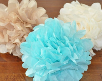 6 tissue poms {neutral boy}