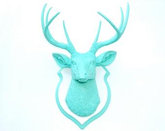 Faux Taxidermy - Aqua Faux Deer Head- Wall Mount -Matching Shield Mount D6363/DS0163