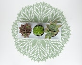 RESERVED Crochet Doily, tabletop decor, lace centerpiece, frame for wall decor, lime green, succulent sage, heirloom quality, cottage chic