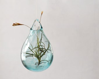 Air Plant Terrarium / Hand Blown Glass Vase/ Transparent Pale Blue / Flower Vase / Wall Decor