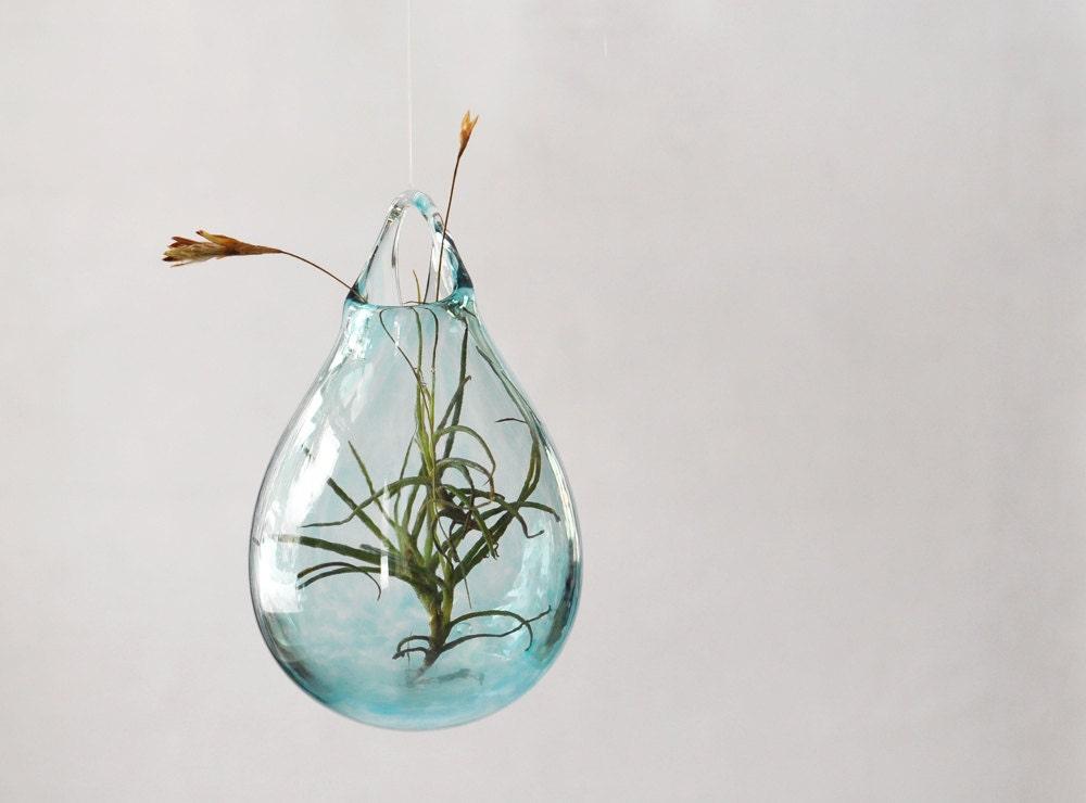 Air plant vase hand blown glass vase transparent pale blue for Air vase