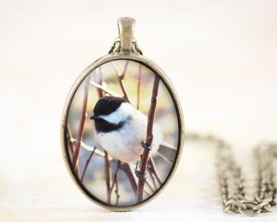 Chickadee Necklace - Chickadee Bird Jewelry Pendant Bronze, Bird Necklace, Chickadee Jewelry, Chickadee Pendant, Chickadee Photo - CLEARANCE