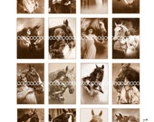Digital Clipart, instant download, Vintage Women with Horses Images--white horse bay black--Digital Collage Sheet (8.5 by 11 inches) 195