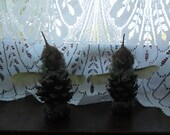 Cone Faerys - faery fae fairy  pagan witch nature natural ornaments housewares spiritual