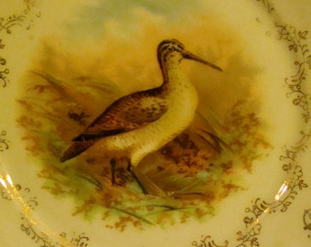 Bavaria 1880  Bird Cabinet Plate  Germany