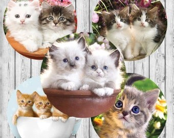 """INSTANT DOWNLOAD JPEG Kitten Cuties 4x6 Dital Image Sheet. 1"""" Circles. Bottle Cap Images, Hairbows, Jewelry"""