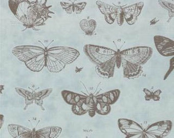 Papillon - Butterfly Etchings Blue by 3 Sisters from Moda