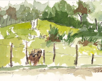 Curious Cow in Field Original Watercolor and Ink Sketch