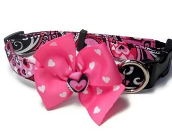 Valentine Dog Collar size Large