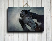 In Blue - Horse Art - Horse Photography - Horse canvas art - Blue horse decor - Animal photography