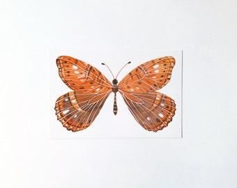 Butterfly No.2 - postcard