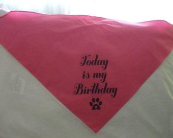 DOG BIRTHDAY BANDANA - Large