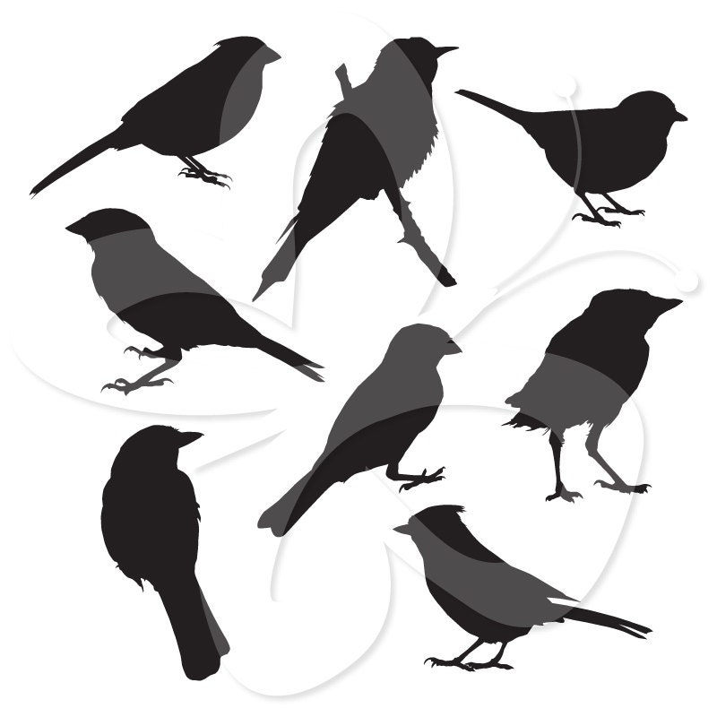 Bird Silhouettes Digital Clip Art Clipart by ...